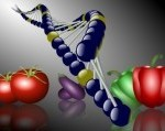 gmoblog-a-group-of-different-kinds-of-vegetables-and-dna-chain