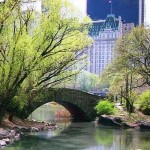 central_park_river_bridge1