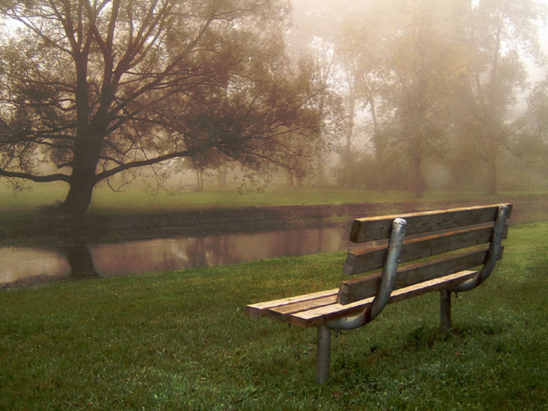 Park Bench-resized-600
