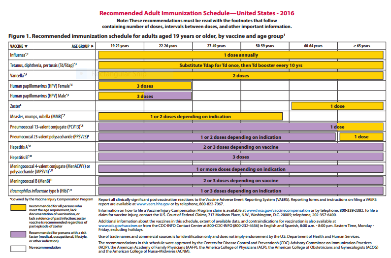 2016 adult schedule