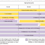 adult schedule 2006