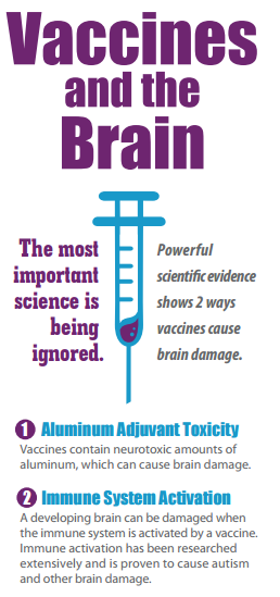 vaccines and the brain